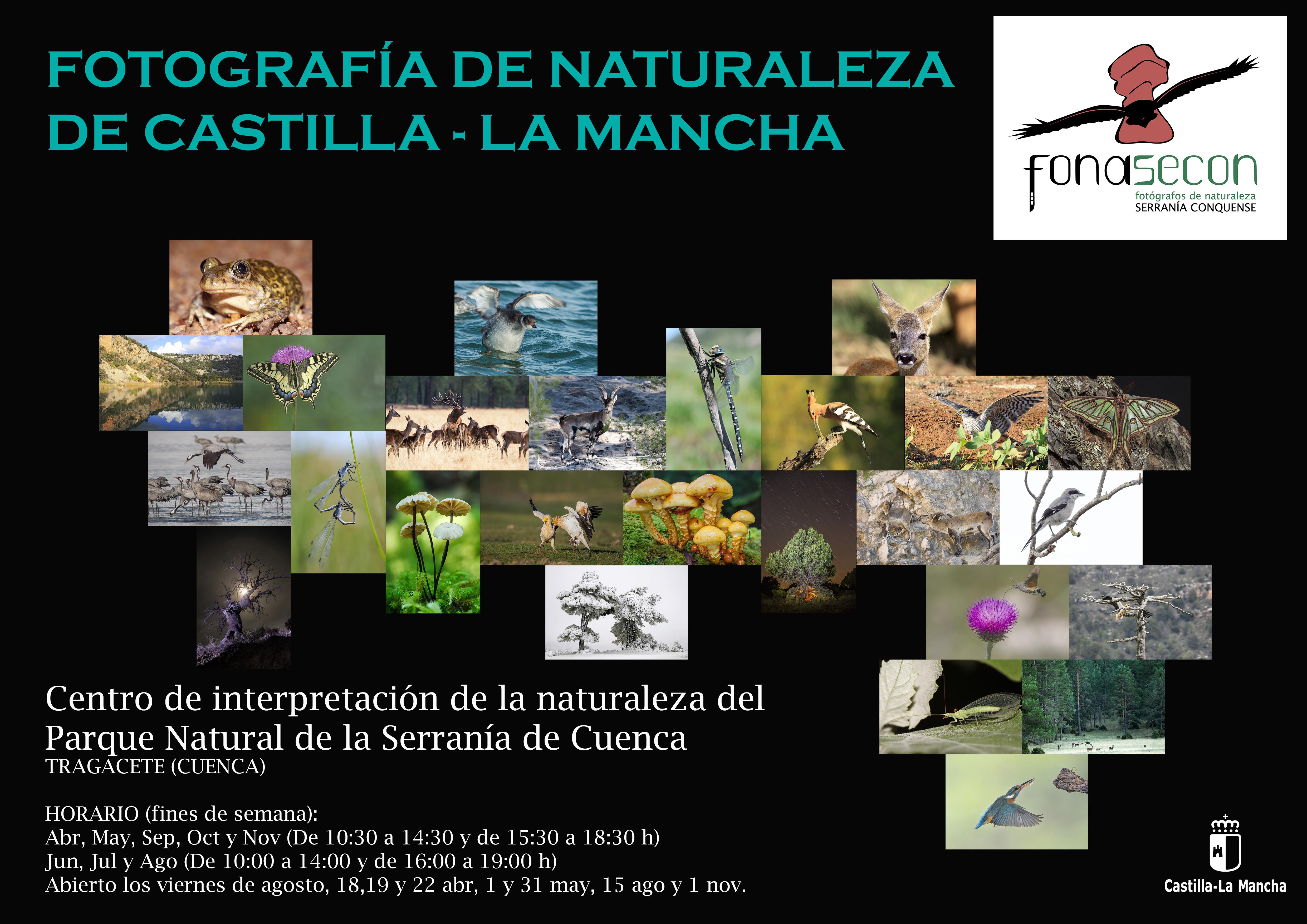 CARTEL EXPOSICION FOTOGRAFICA CASTILLA-LA MANCHA AL NATURAL
