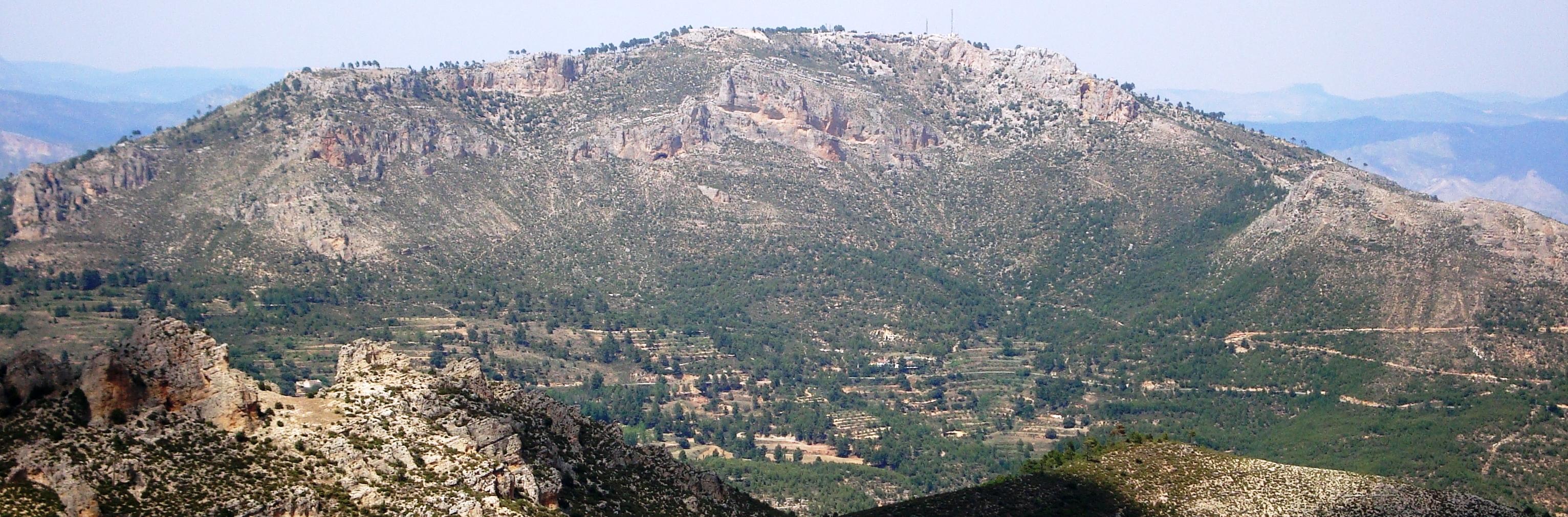 El monte Ardal