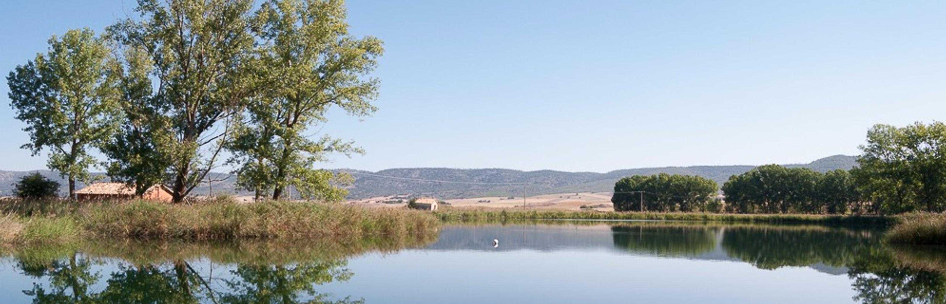 Laguna de los Cedazos o de la Atalaya