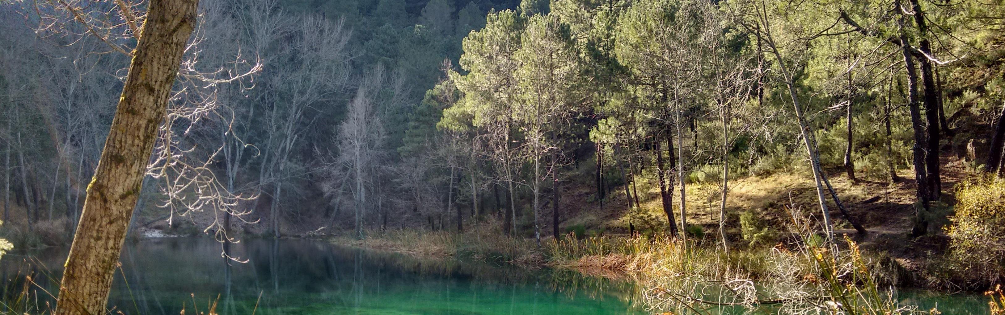 Para descansar y disfrutar de la belleza de la naturaleza