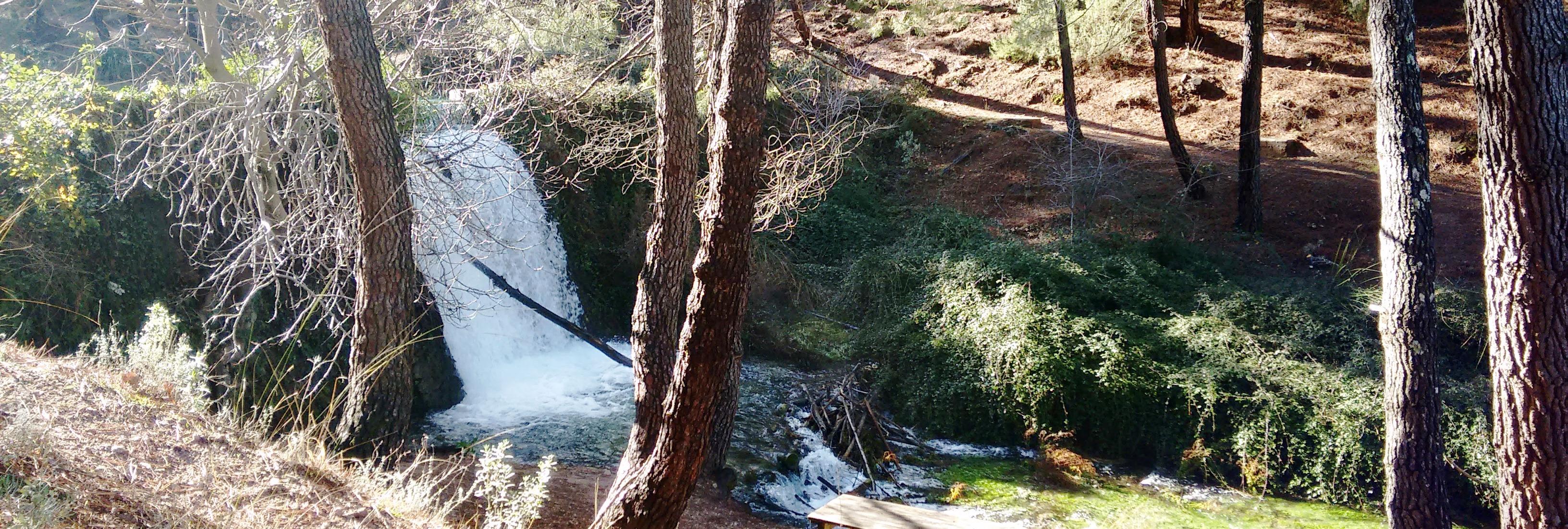 Antigua represa naturalizada