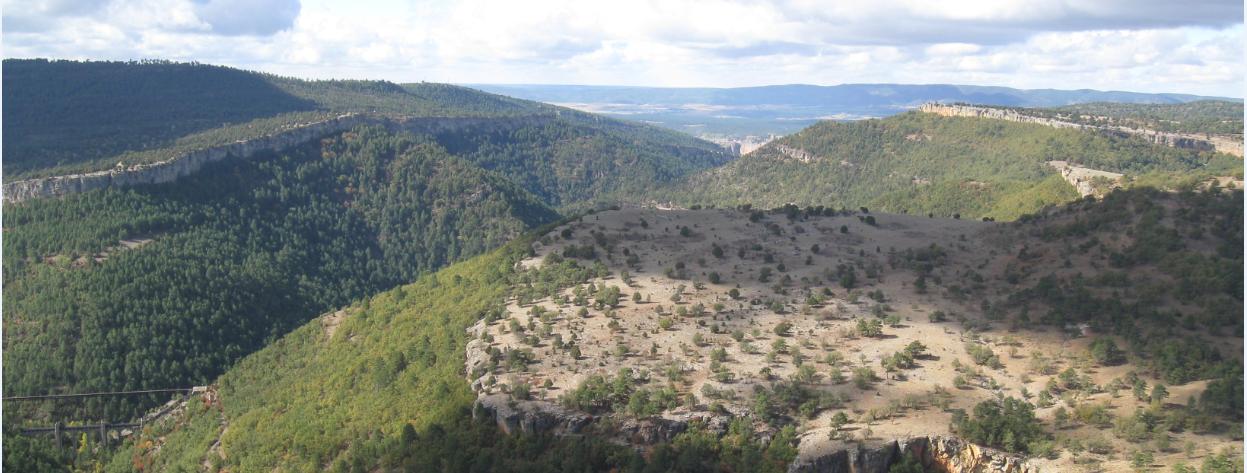 Vista desde el Mirador del Tío Cogote