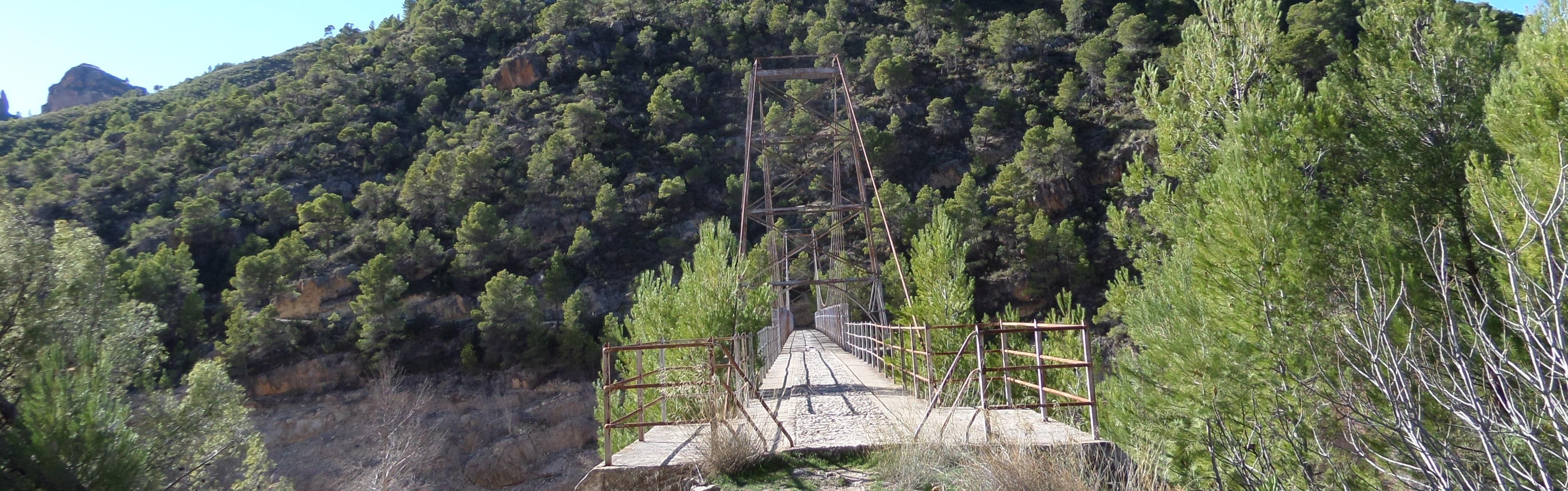El puente Colgante