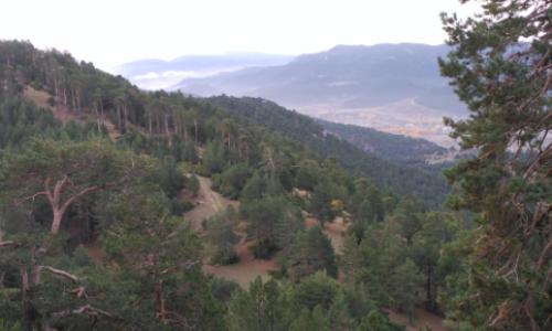 Panorámica desde el Cerro de San Felipe