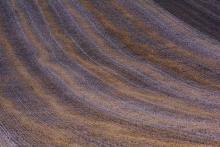 Campos de Castilla.Pelegrina. ParqueCampos de Castilla.Gabriel Solera.Pelegrina. Parque Natural del Barranco del río dulce. Guadalajara Natural del Barranco del río dulce. Guadalajara