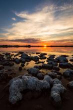 Con los pies  mojados.Alberto Serrano Azaustre.Reserva Natural Lagunas de Villafranca de los Caballeros. Toledo