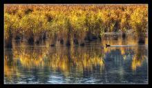 Realidades.David Serrano Gismero.Mirador de la laguna de Uña.Parque Natural de la Serrania de Cuenca. Cuenca