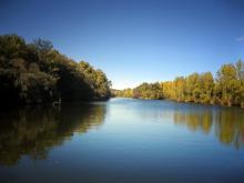 CONCURSO INFANTIL.Tabla de la Hiedra.Héctor Fernández de las Heras. Rio Bullaque. Red Natura 2000. Ciudad Real