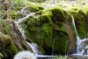 El río Cuervo fluye entre las tobas