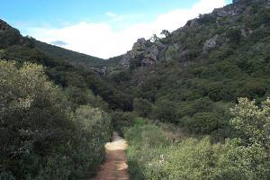 Camino acceso a Chorrera de Horcajo