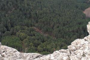 Desde el mirador en el sendero del pinar