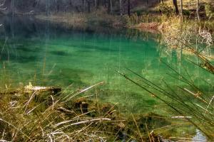 El nacimiento de arroyo Frío