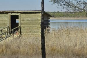 Observatorio de aves. Laguna Chica