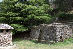 la fuente del Ardal